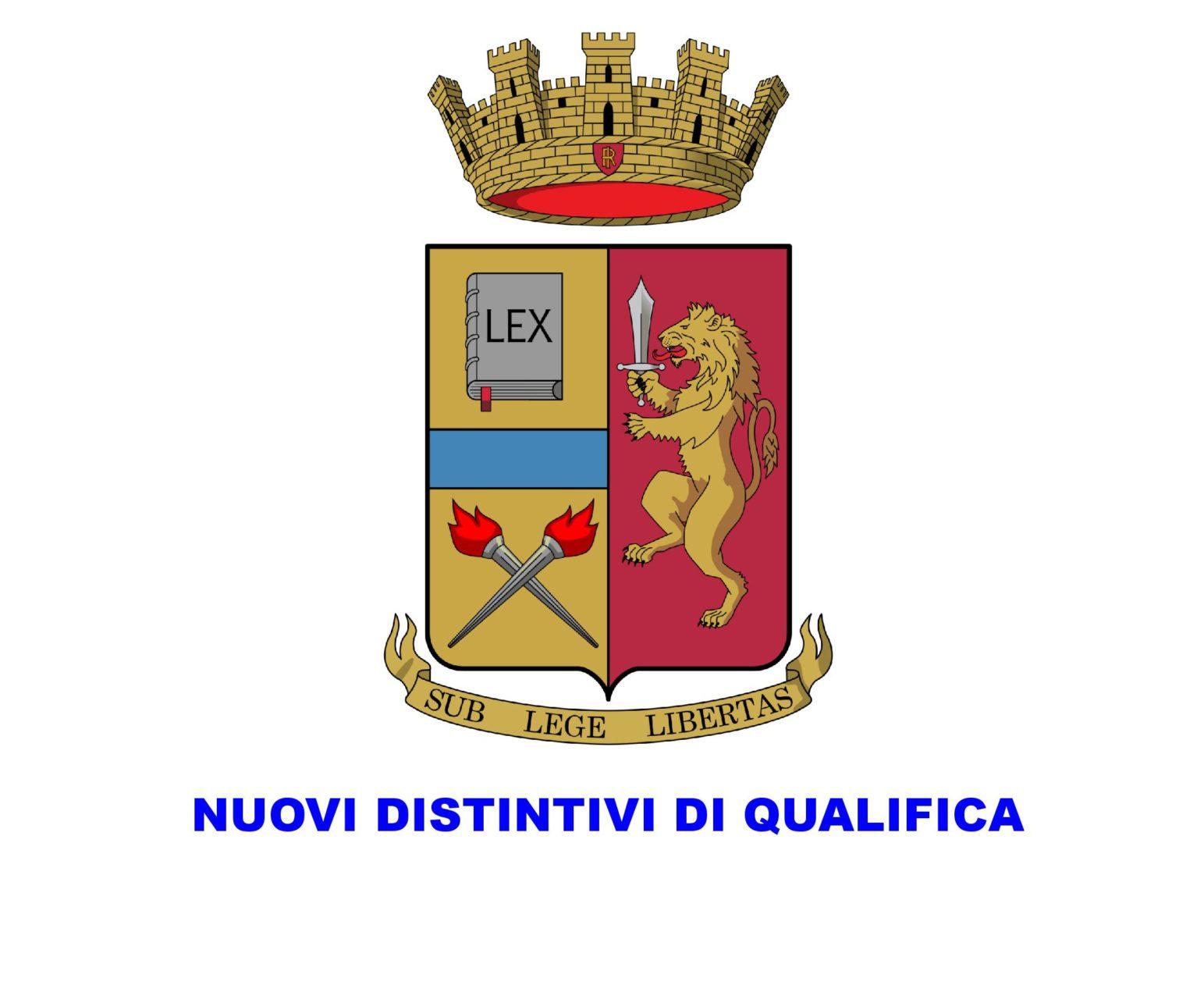 Commissione di studio per la revisione dei distintivi di qualifica.