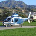 Modifica dei distintivi di specialitàdei Reparti volo della Polizia di Stato