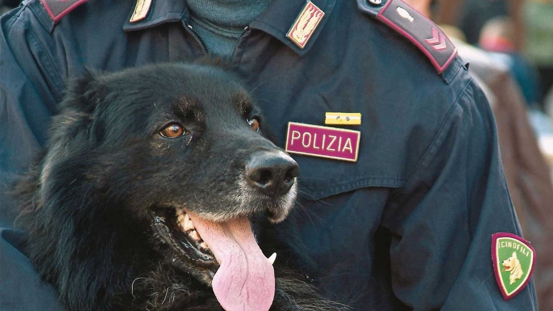 Cinofili Polizia di Stato